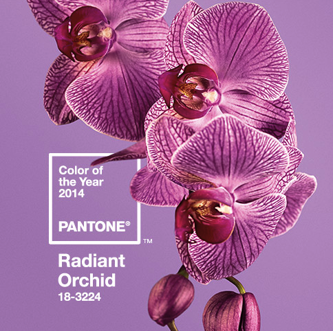 Pantone Color of the year 2104 Raidant Orchid Purple color