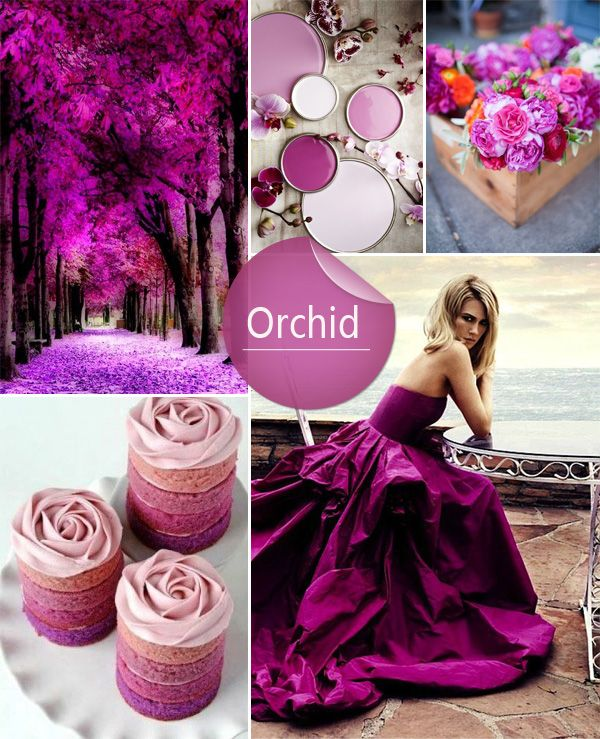 Orchid Wedding Colors